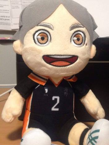 Sugawara Plushie from AnimUK