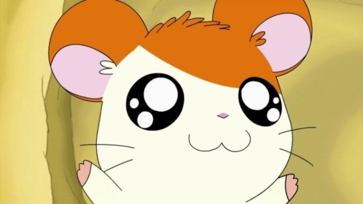 hamtoro-anime
